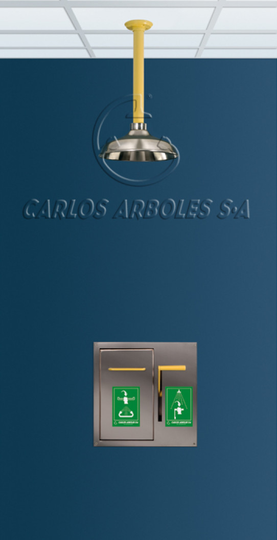 Shower and Eyewash, wall recessed mounting, SS shower head